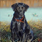 Boss - Canine - Westwood Gallery - Kristine Byars