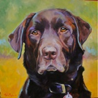 Clyde - Canine - Westwood Gallery - Kristine Byars