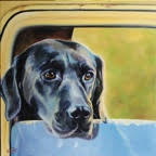 Doggedly Waiting - Canine - Westwood Gallery - Kristine Byars