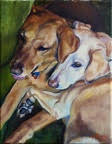 Sandy and Tessa - Canine - Westwood Gallery - Kristine Byars